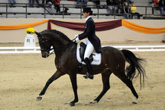Dressage world cup