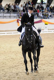Dressage world cup Royalty Free Stock Photography