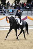 Dressage world cup Royalty Free Stock Photo