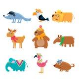 Dressed Animals Set Stock Images