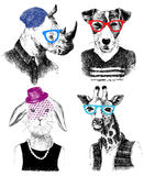 Dressed up animals set in hipster style Royalty Free Stock Photo