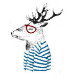 Dressed up deer in hipster style Royalty Free Stock Photos