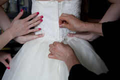 Dressing the bride Stock Photography