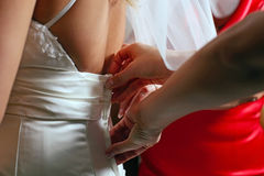 Dressing bride for wedding ceremony Royalty Free Stock Photo