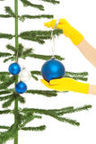 Dressing christmas tree Royalty Free Stock Images