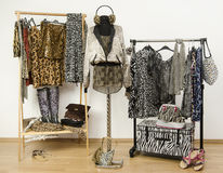 Dressing closet with animal print clothes arranged on hangers. Stock Image
