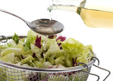 Dressing green salad Royalty Free Stock Photography