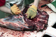 Free Dressing Of Deer Carcass Stock Images - 15918804