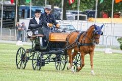 dressuur van de paard de drijfconcurrentie Royalty-vrije Stock Foto