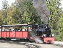 Drev för ånga för smalt mått järnväg Fotografering för Bildbyråer