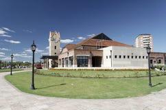 drev för argentina historiskt stationstigre Royaltyfri Fotografi