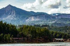 Drev i berglandskapet arkivfoto