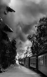 Drev i winterlandscapemit-rök arkivbild