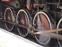 Drev järnvägsspår Royaltyfria Foton