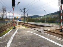 Drev järnvägsspår Arkivbilder