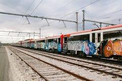Drev med grafitti Royaltyfri Foto
