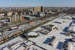 Drev mellan områden av den Tyumen staden Ryssland Royaltyfri Foto