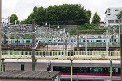 Drev på järnvägstation stads- infrastruktur royaltyfria foton