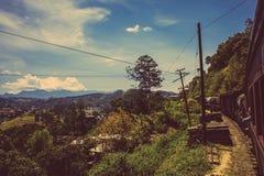 Drevet är den mycket bekväma vägen av loppet till och med Sri Lanka Royaltyfria Foton