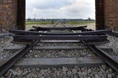 Drevjärnväg på Auschwitz Birkenau, Polen Royaltyfri Bild