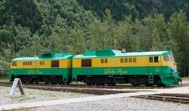 Drevlokomotiv Arkivbilder