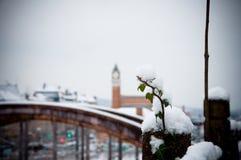 Drevstation i vinter arkivbilder