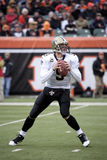 Drew Brees drops back to pass Royalty Free Stock Photo