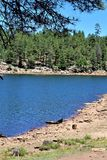 Drewien Jar jezioro, Coconino okręg administracyjny, Arizona, Stany Zjednoczone Obrazy Stock