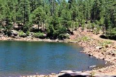 Drewien Jar jezioro, Coconino okręg administracyjny, Arizona, Stany Zjednoczone Zdjęcie Royalty Free