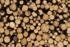 Drewna ścienny pełny ramowy tło Fotografia Stock