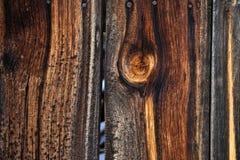 Drewna adry tekstura Zdjęcie Stock