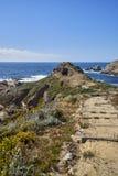 Drewna i piaska ślad meandruje wokoło w kierunku Pacyficznego oceanu dokąd ocean spotyka niebo Obrazy Royalty Free