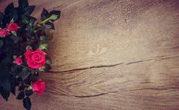 Drewna i róż tło Obrazy Royalty Free