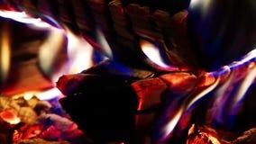 Drewna i węgla ogienia oparzenie zbiory wideo
