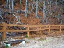 Drewna i wzgórze za ogrodzeniem Obraz Stock