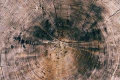 Drewna pęknięcia linii tekstura dla tapety zdjęcie royalty free
