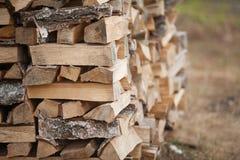Drewna paliwo dla przemysłu energetycznego Zdjęcia Royalty Free