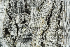 Drewna tła Deskowa tekstura Obrazy Royalty Free