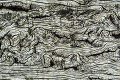 Drewna tła Deskowa tekstura Zdjęcia Royalty Free