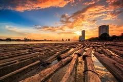 Drewna w wodzie z zmierzchu niebem obraz royalty free