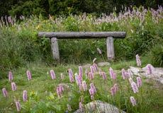Drewniana ławka otaczająca kwiatami Sistani Tatrzańskie góry Obrazy Royalty Free