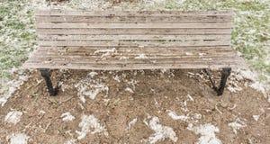 Drewniana ławka otaczająca okwitnięciem fotografia royalty free