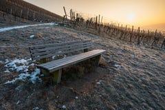 Drewniana ławka w wschodzie słońca w winnicy Obrazy Royalty Free