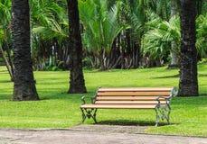 Drewniana ławka z aliaż strukturą w palma ogródzie obrazy stock
