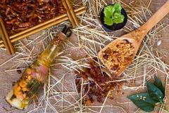 Drewniana łyżka, wysuszonego zdruzgotanego chili czerwony pieprz Obraz Stock