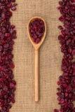 Drewniana łyżka z cranberries Zdjęcie Stock