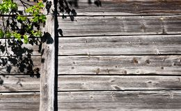 Drewniana ściana i dyndać gałąź drzewo obrazy stock