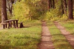 Drewniana ścieżka Zdjęcia Royalty Free