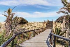 Drewniana ścieżka i kroki na piasek diunach plaża obraz royalty free