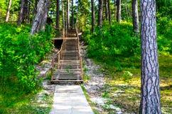 Drewniana ścieżka i schodki obrazy stock